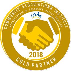 CAI Gold Partner 2018 Logo